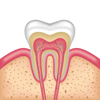 General Myths About Root Canal Treatment